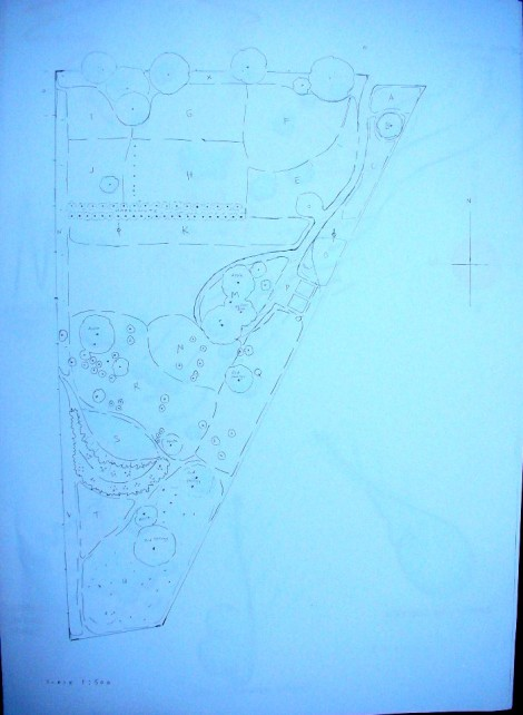 Intueri Farm Ground Plan w Existing trees