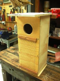 Nest Box for Parrots 20x20x50